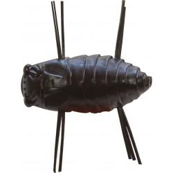 Leurre Souple Insecte...