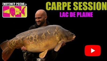"VIDEO : CARPE SESSION ""lac de plaine"""